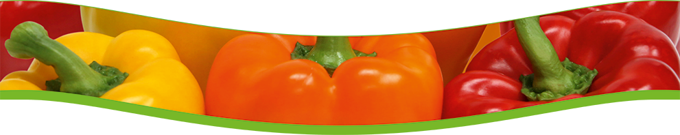 Gemüsebau Hofmann Produkte
